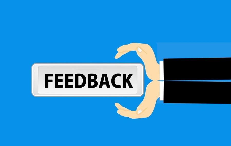 feedback, survey